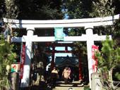 天沼八幡神社にたくさんの初詣参拝客
