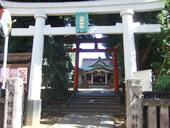 天沼八幡神社でお祭りが開催